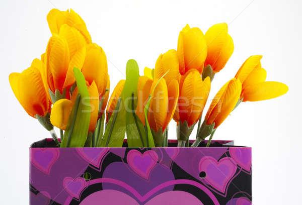 Presente cesta flores verde púrpura bolsa de la compra Foto stock © advanbrunschot