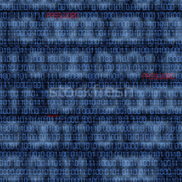 Binary codes with hacked password Stock photo © aetb