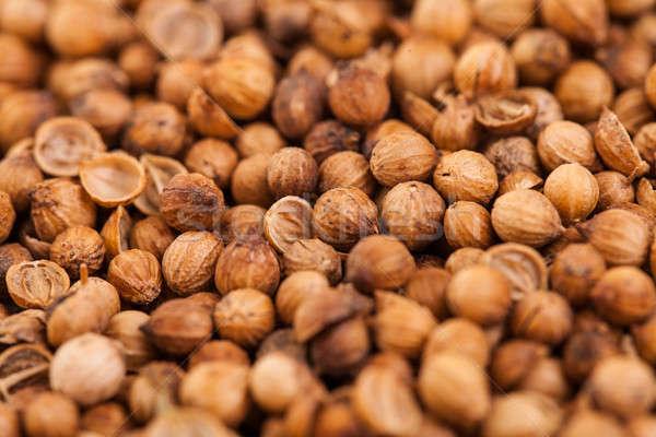 Coentro sementes extremo textura Foto stock © aetb