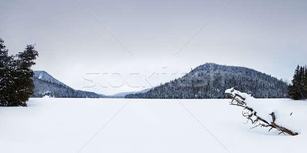 凍結 湖 冬 いい 表示 山 ストックフォト © aetb