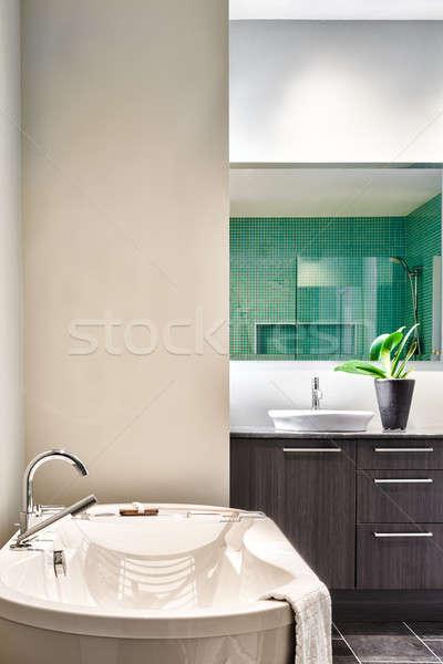 Modern Bathroom using soft Green Pastel Colors Stock photo © aetb