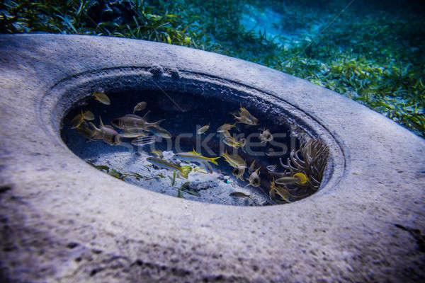Tire Found Underwater Stock photo © aetb