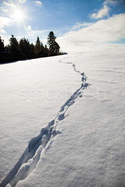 Güneş manzara kar kış ayak izi güneşli Stok fotoğraf © aetb
