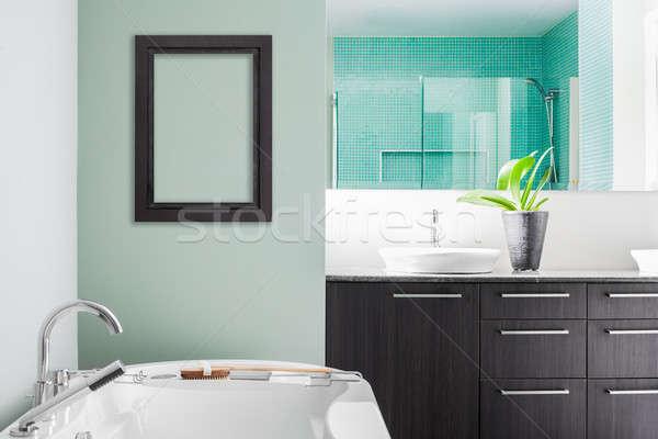 Modern fürdőszoba puha zöld pasztell színek Stock fotó © aetb