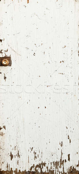 Porta texture vecchio bianco vernice muro Foto d'archivio © aetb