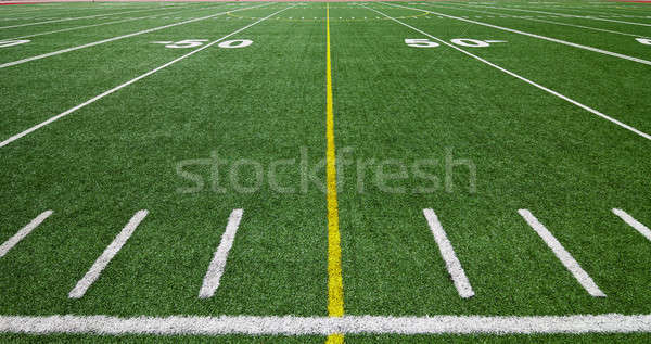 Futbol sahası Stok fotoğraf © aetb