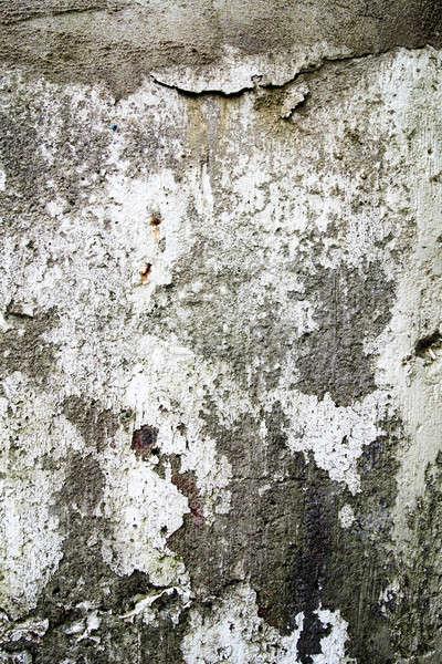 Beton doku ayrıntılar doğal aydınlatma dizayn Stok fotoğraf © aetb