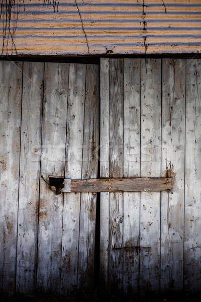 Vieux porte détails gris planche bois Photo stock © aetb