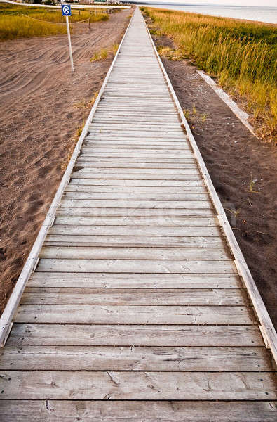 A wooden walkway along the shore Stock photo © aetb