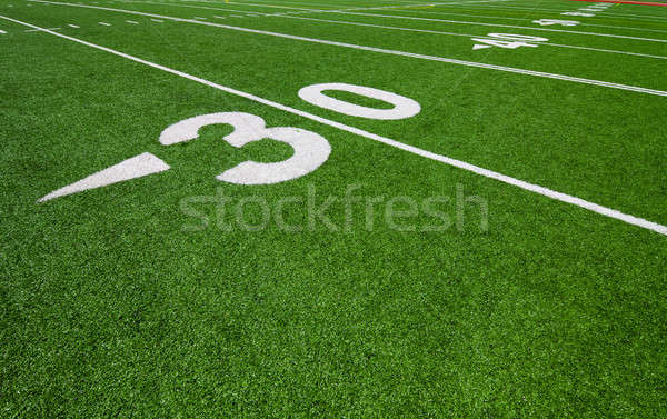 thirty yard line - football  Stock photo © aetb