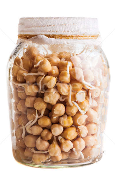 Sprouting Chickpeas Growing in a Glass Jar Stock photo © aetb
