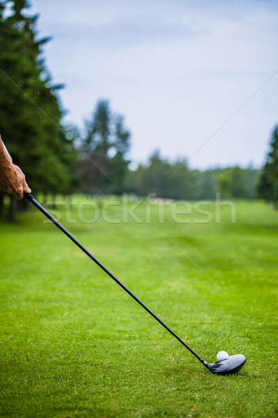 Golfer at the Start with Copyspace for your text Stock photo © aetb