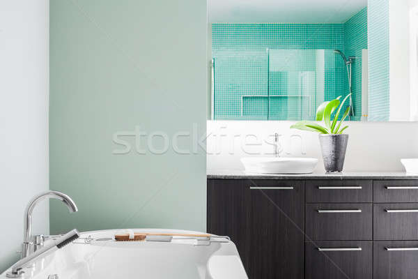Modern Bathroom using soft Green Pastel Colors Stock photo © aetb