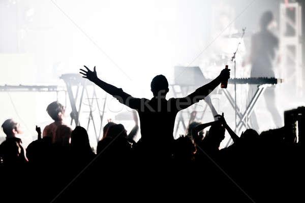 Big concert Stock photo © aetb