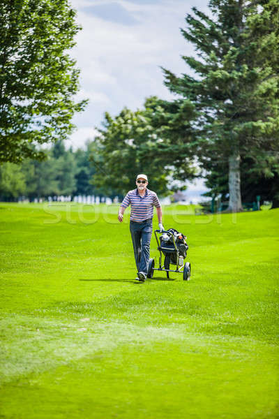 Mature Golfer on a Golf Course Stock photo © aetb