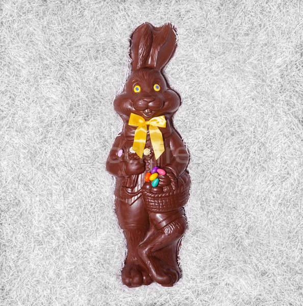 Details of a Big Chocolate Bunny Stock photo © aetb