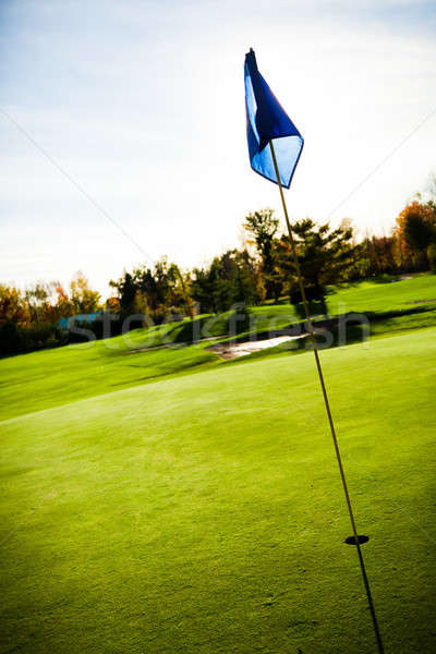 Golf course Stock photo © aetb