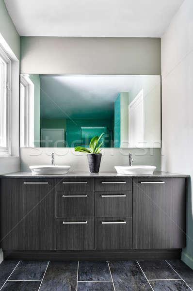 Moderne badkamer zachte groene pastel kleuren Stockfoto © aetb