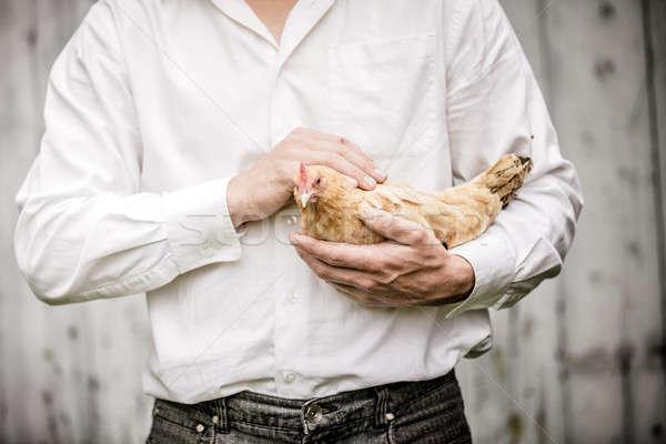 Agriculteur beige poulet ferme nature Photo stock © aetb