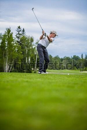 Man playing golf Stock photo © aetb