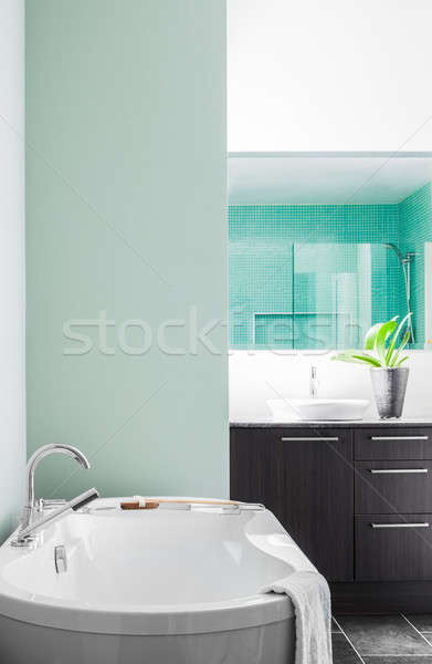 Modern banyo yumuşak yeşil pastel renkler Stok fotoğraf © aetb