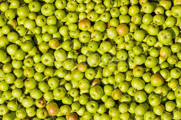 テクスチャ リンゴ 食品 フルーツ 背景 夏 ストックフォト © aetb