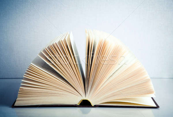 Fanned book Stock photo © aetb