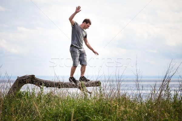 バランス ツリー 休暇 枯れ木 自然 ストックフォト © aetb
