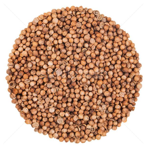 Coentro sementes extremo isolado perfeito Foto stock © aetb