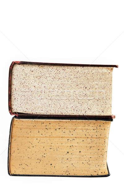 Iki eski sözlük Stok fotoğraf © aetb