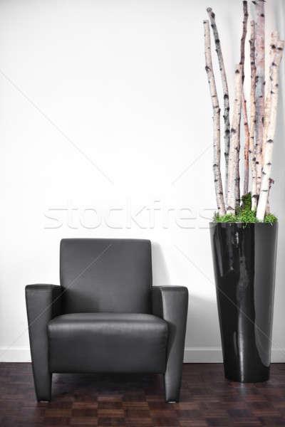 Modern iç oda beyaz duvar uzay Stok fotoğraf © aetb