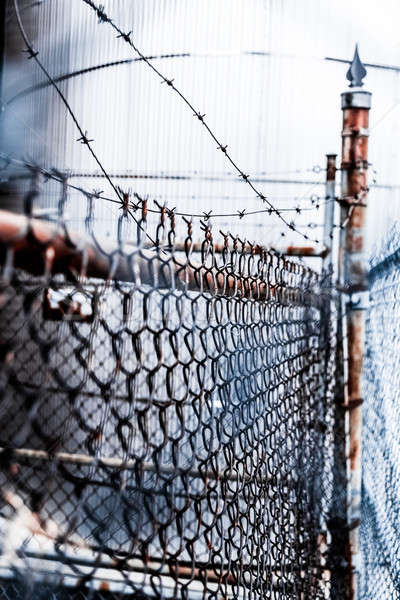 Stock photo: Barb Wire and Fence