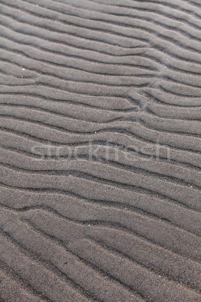 Line in the Sand of a Beach created by the Low Tide Stock photo © aetb