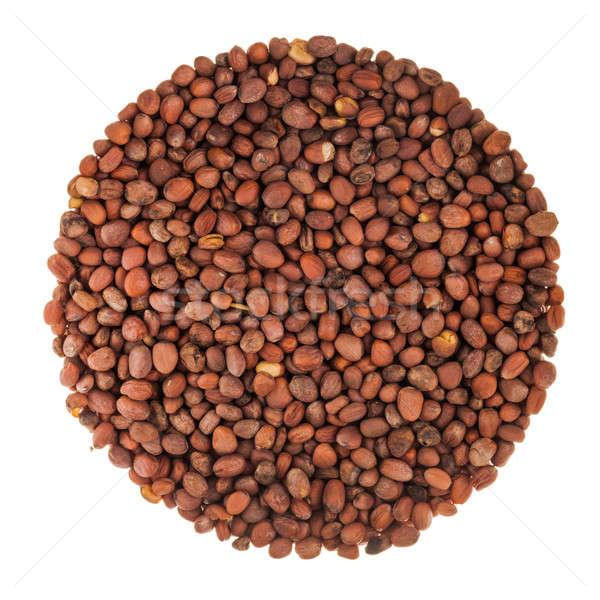 Circle of Radish Seeds Isolated on White Stock photo © aetb