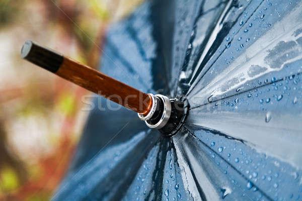 傘 結婚式 雨 雨の 日 リング ストックフォト © aetb