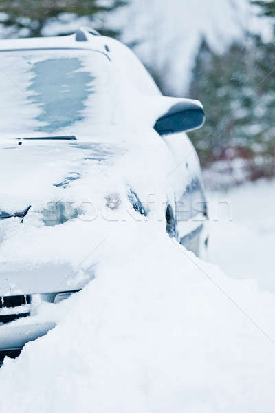 Car Stuck after a Snowstorm Stock photo © aetb