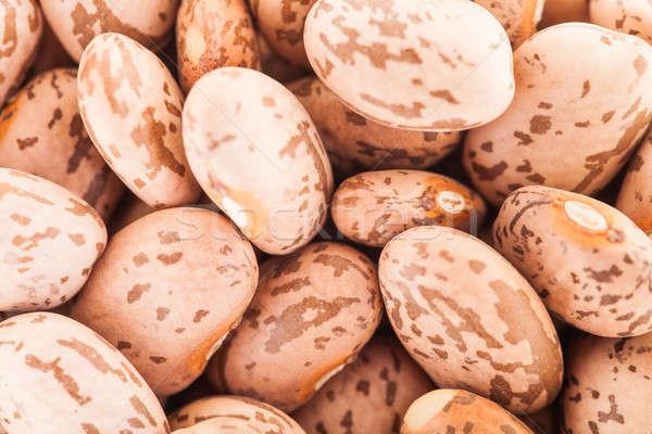 Closeup of Beige Big Beans  Stock photo © aetb