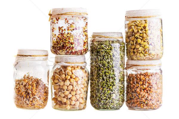 различный семян растущий стекла банку Сток-фото © aetb