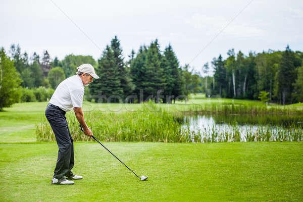 Olgun golfçü golf sahası hazır su yeşil Stok fotoğraf © aetb