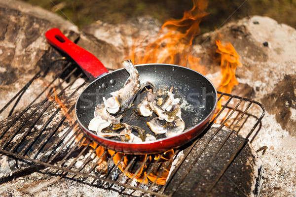 Stock fotó: Kicsi · főzés · tábortűz · serpenyő · étel · buli
