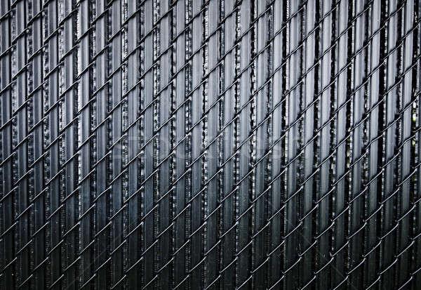 Siyah çit Metal model Stok fotoğraf © aetb