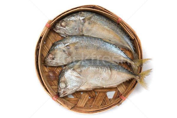 Mackerel fish Stock photo © AEyZRiO