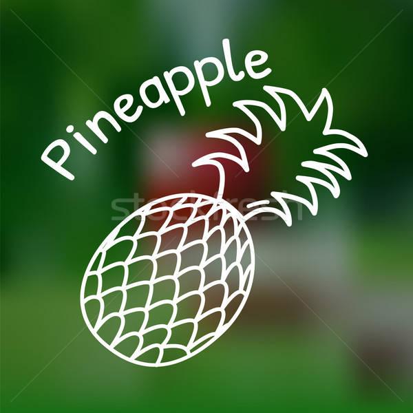 Fino linha ananás ícone branco nome Foto stock © Agatalina