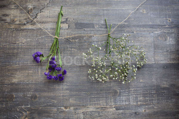 Two hanging flower bunches Stock photo © Agatalina