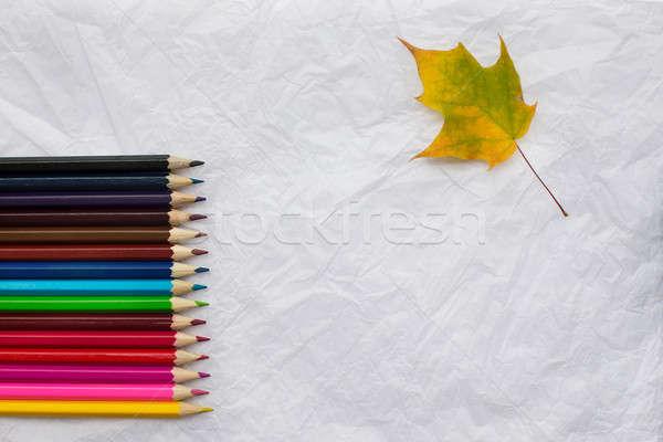 Crayons jaune feuille d'érable rangée blanche Photo stock © Agatalina