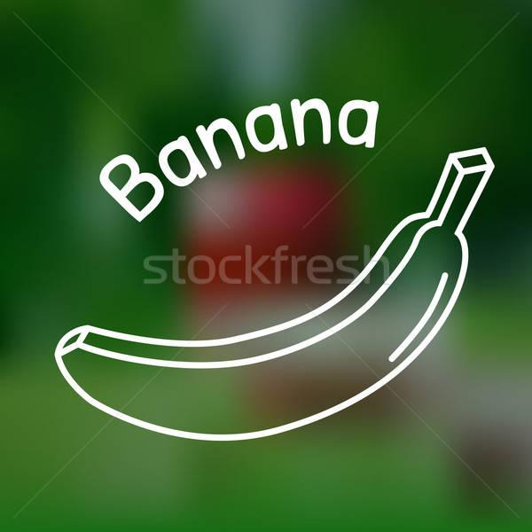 тонкий линия банан икона белый название Сток-фото © Agatalina