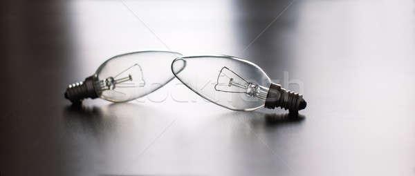 Two light bulbs Stock photo © Agatalina