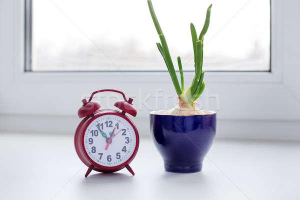 Ui glas klok vensterbank Blauw tijd Stockfoto © Agatalina