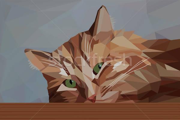 Zamyślony czerwony kot niski twarz charakter Zdjęcia stock © Agatalina