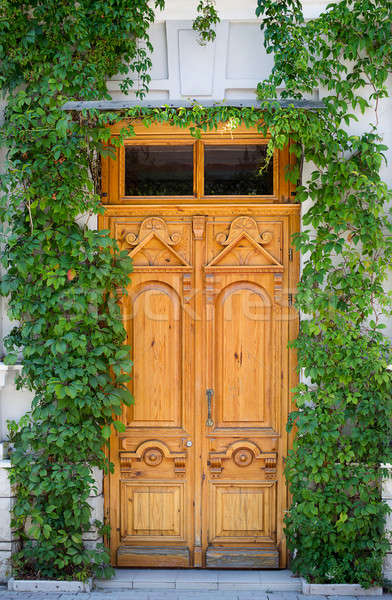 Yellow old door with ivy Stock photo © Agatalina